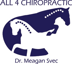 All 4 Chiropractic